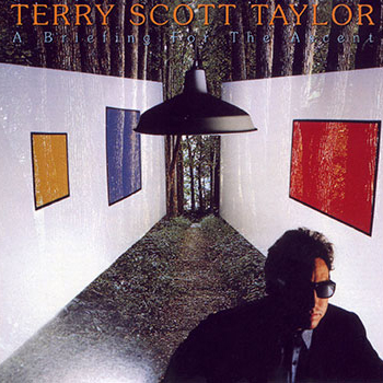 Terry Scott Taylor ~ A Briefing for the Ascent